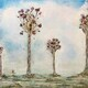 Different But the Same